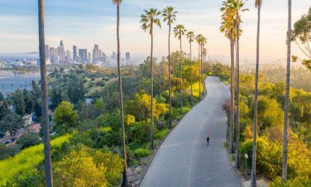 Tips voor een reis naar Amerika na je studie | Bestemmingen & Reisideeën